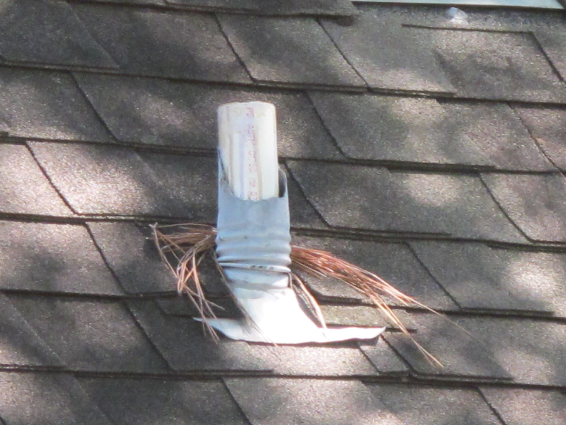 Lead Pipe Flashing Chewed By Squirrels Brinkmann Quality